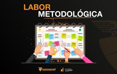 Afiche 1-Labor Metodológica